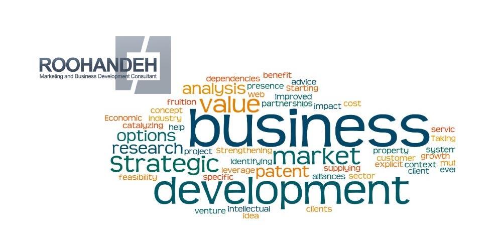 راهکارهای مدیریت توسعه کسب و کار